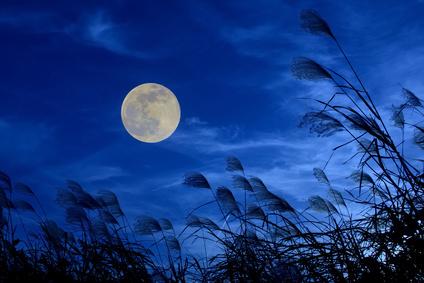 Nouvelle Lune du 28 Mars